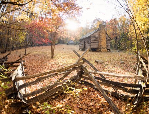 Capturing the Best Places to Find Fall Color in the Smokies