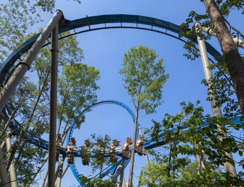 Dollywood's Thrills in the Hills Contest