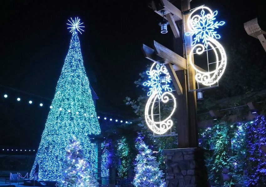 Dollywood Christmas.The Story Behind The New Tree Show Dollywood Blog