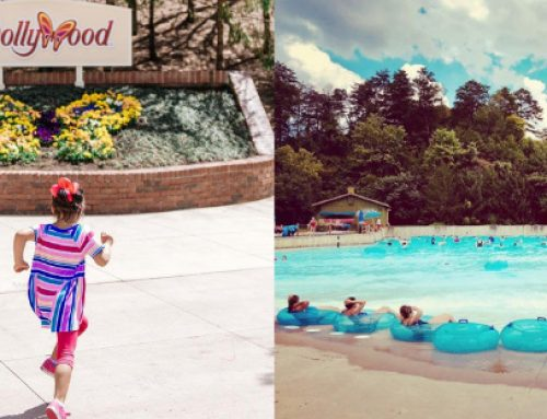 2019 Dollywood Dates You'll Want to Know