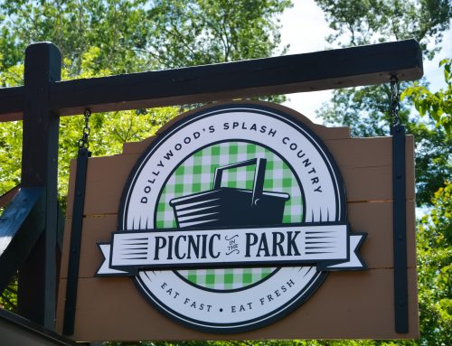 What is Picnic in the Park?