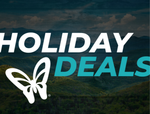 Dollywood Deals: Black Friday, Cyber Monday and More!
