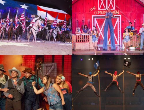 Now Open! Enjoy These Shows While in Pigeon Forge
