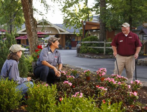 Dollywood Ranked Among America's Best Employers