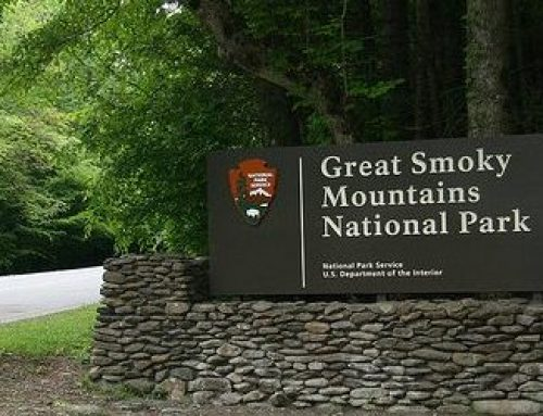 Best Daily Excursions for Smoky Mountain Vacations