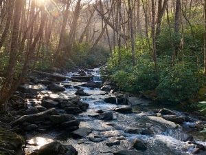 Pigeon Forge Facts, Little Pigeon River