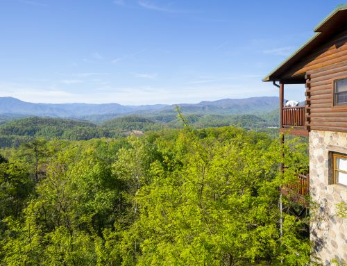 What to Look for When Booking a Cabin Near Gatlinburg
