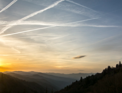 Interesting Facts You Might NOT Know About Great Smoky Mountains National Park